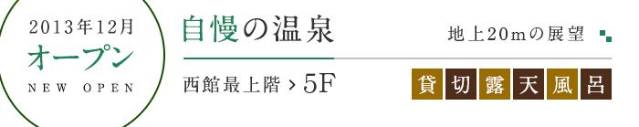 2013年12月オープン自慢の温泉源泉かけ流しの湯貸切露天風呂